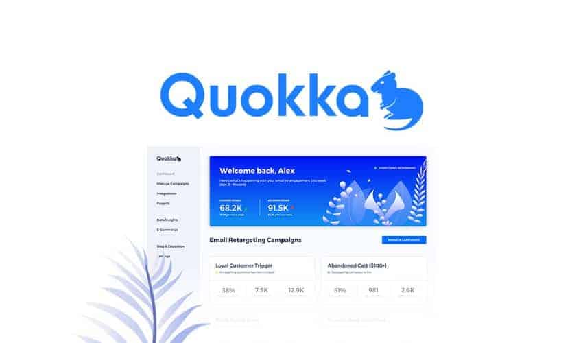 Automatically track unopened emails and retarget customers with Quokka.